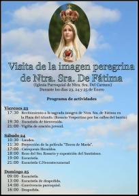 visitavirgenperegrinaenenero2015
